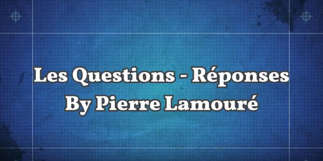 Questions / Réponses by Pierre Lamouré