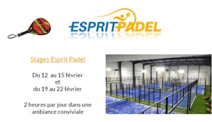 インターンシップ padel エスプリへ Padel