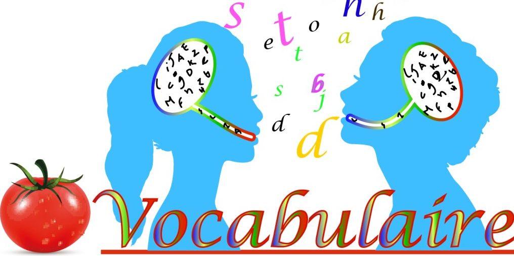 Le vocabulaire padel