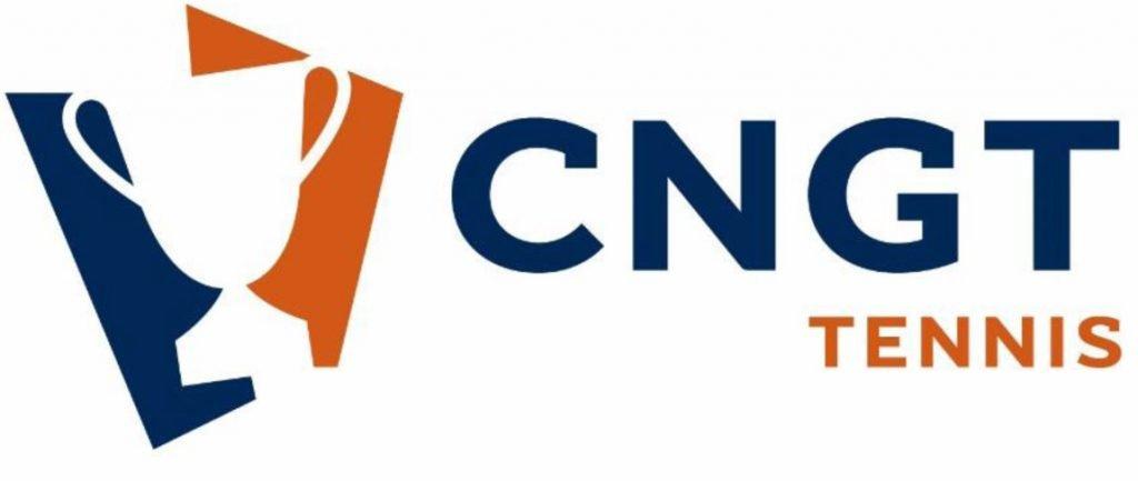 CNGT 2020:近日公開