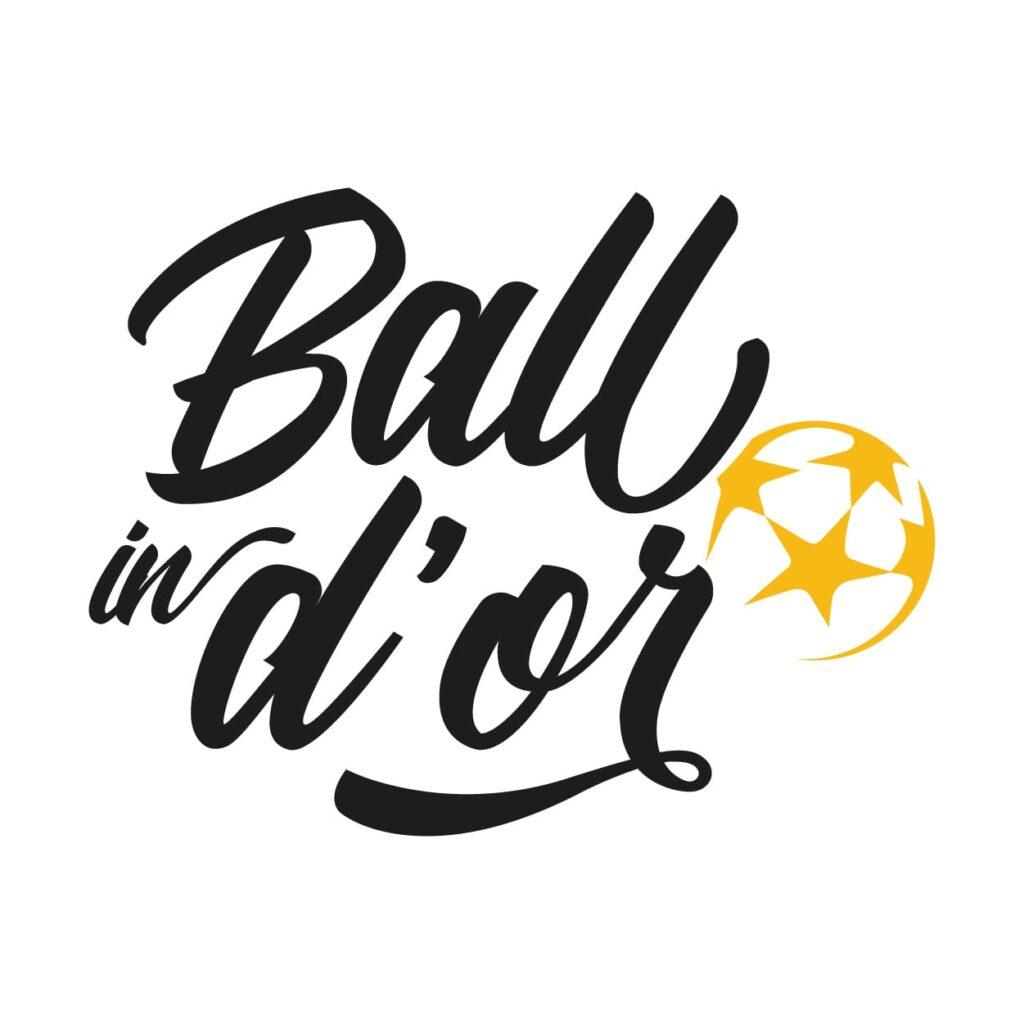 2ドルーロゴのDREUXボール